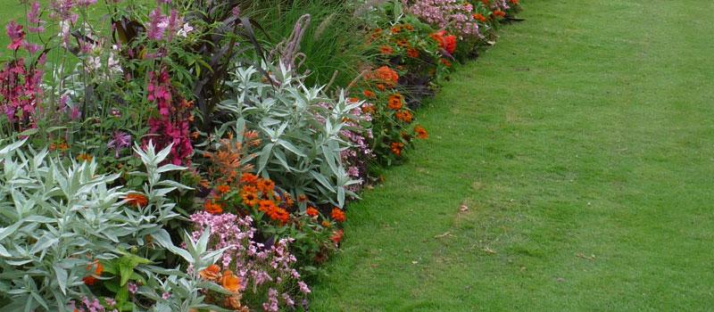 Cours-sur-la-couleur-en-creation-de-massif-fleurit