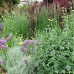 Développement durable et spectacle en fleurissement