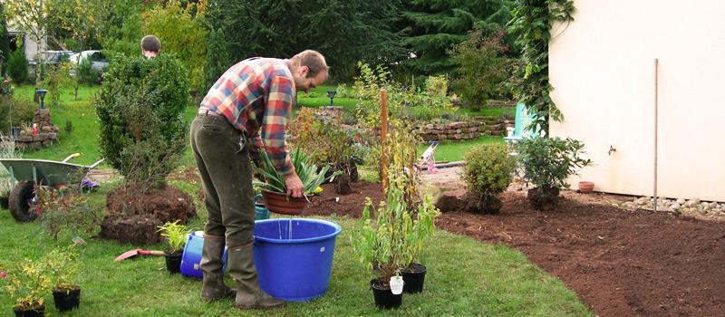 Planter-entretenir-massif-plantes-vivaces