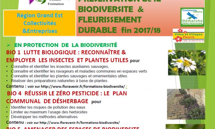 Flyer Floravenir PDF formations fin 2017-2018